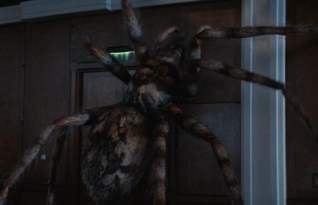 plano-criticoarachnids-in-the-uk-aranhas-doctor-whoarachnids-in-the-uk-620x400