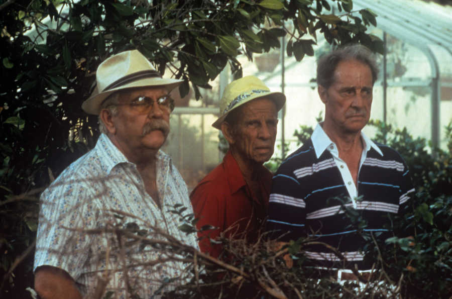 46662-wilford-brimley-hume-cronyn-and-don-ameche-in-cocoon